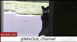 میکس و صداگذاری عالی به کانال تلگرام ما بپیوندید[T.me MixClub_Channel]