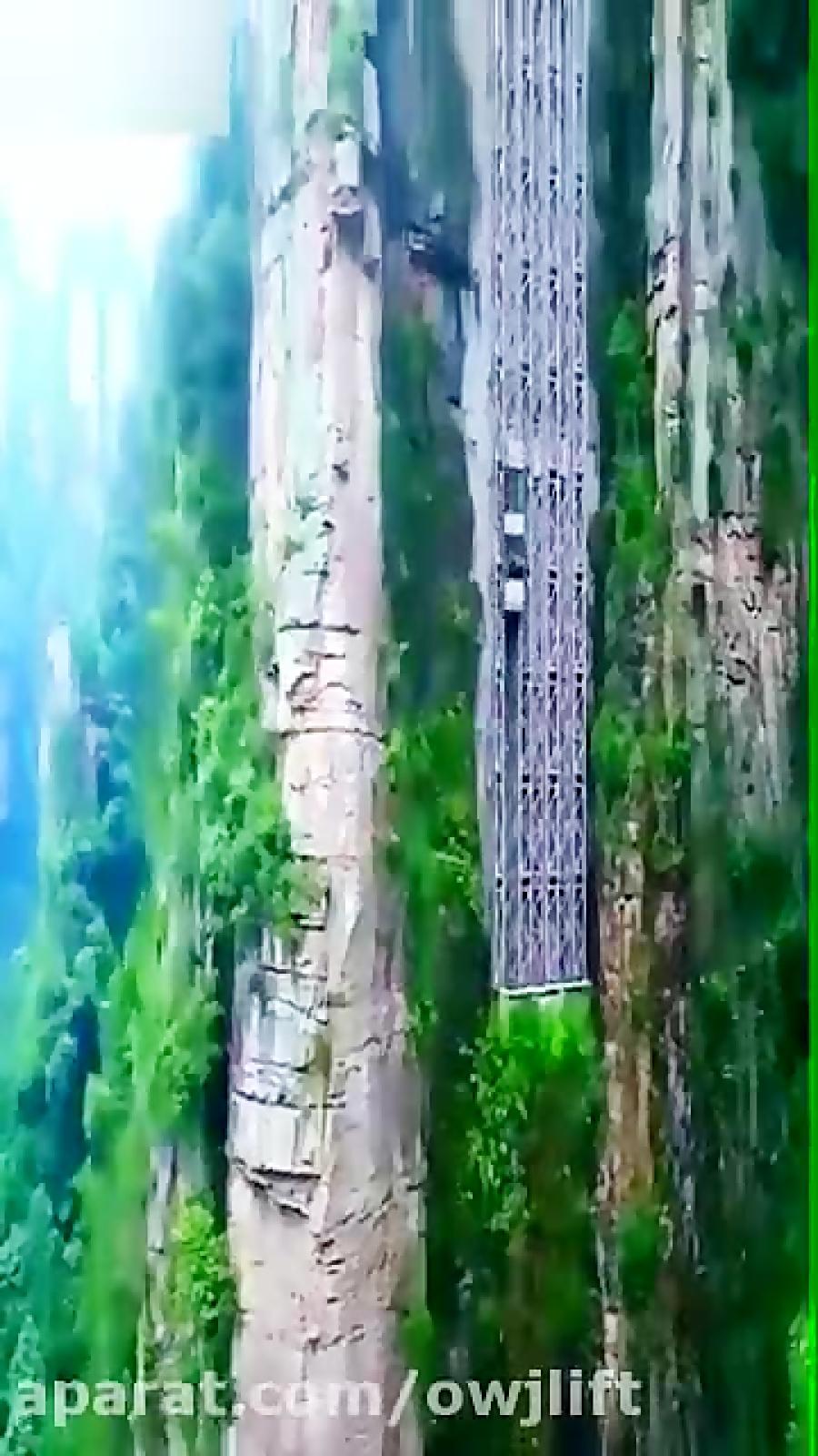 آسانسوری در پارک جنگلی ژانجیای جی