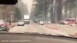 کالیفرنیا بعد از آتش سوزی
