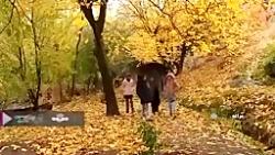 طبیعت پاییزی زیبای پای...