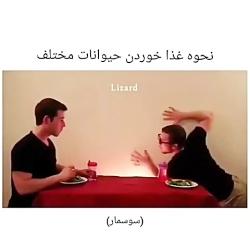 غذا خوردن به سبک حیوانات!(طنز):))دنبال=دنبال