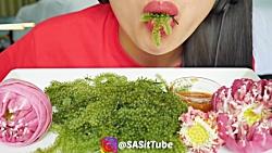 چالش جلبک خوری•–•❤فا...