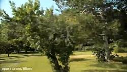 آنونس فیلم مستند «بذرهای نابودی»
