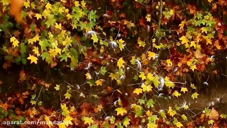 دکلمه بسیار زیبا از آرمان زاهدی در مورد پاییز