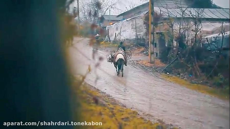 تنکابن نگینی در شمال ایران