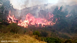 آتش سوزی روستای سیف 2