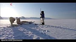 مستند سیاره انسان ها : شکار کوسه در زیر یخ توسط اسکیمو ها در گرین لند