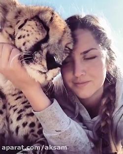 دختر و یوزپلنگ زیبا