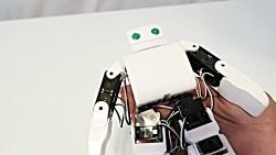 ربات انسان نما PLEN2
