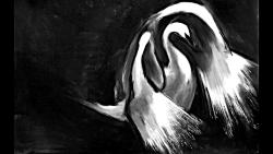 Qzama Quartet - Montenegrian Swan  موس...