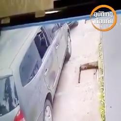 دزدی ماهرانه