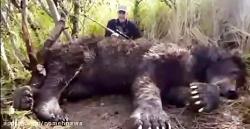 بزرگترین حیوانات در نو...
