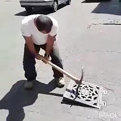 نجات توله سگ بیخانمان و...