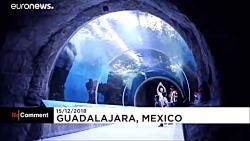 حضور بابا نوئل در آکواریوم مکزیک