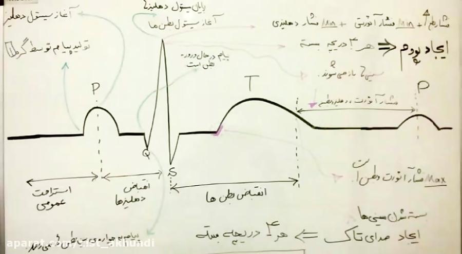 آموزش کامل نوار قلب الکتروکاردیوگرام