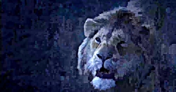 تریلر فیلم شیر شاه ۲۰۱۹