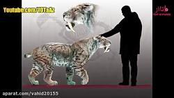 10 حیوانی  که منقرض شده ا...