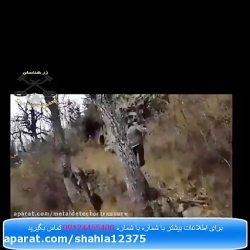 فلزیاب نقطه زن در تهران...
