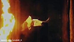 ( سلام فاطمیه ) .... زیباترین کلیپ های مذهبی دانلود به شرط صلوات بر محمد و آل مح