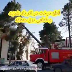قطع درخت در اثر وزش باد شدید در نجف آباد و قطعی برق منطقه