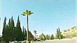 دانشگاه شیراز الفت