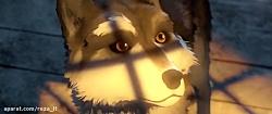 انیمیشن سپید دندان 2018 White Fang دوبله فارسی