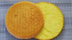 طرز تهیه کیک اسفنجی پایه مخصوص تزیین و خامه کشی برای انواع کیک تولد و مجالس