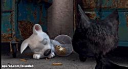 انیمیشن تیزپا - Bolt 2008 با...