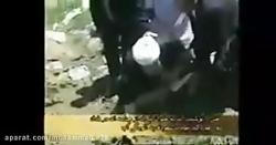 بازدید اکبر هاشمی رفسن...