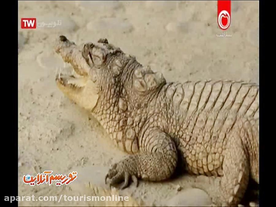 شهرهای: سرباز و چابهار   مروارید خلیج فارس   منطقه آزاد ارس (مستند ایران)