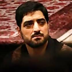 مداحی حاج سید مجید بنی فاطمه به نام برو ماه علی پناهگاه علی