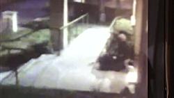 تصاویر تکان دهنده از آزار جنسی یک زن توسط مرد آمریکایی در لس آنجلس