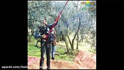 ویبراتور شاخه ای