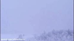 بمب افکن روسی هنگام فرود دو نیمه شد+ فیلم