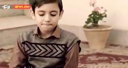 نماهنگ «گندم» با شعر و اجرای سید حمیدرضا برقعی | ایام فاطمیه