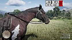 Red Dead Redemption 2 vs Red Dead Redemption   Direct Comparison
