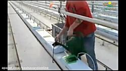 آماده سازی گلخانه و بستر کاشت برای کشت گوجه فرنگی هیدروپونیک