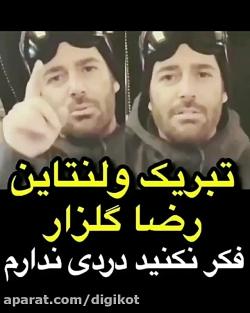 تبریک ولنتاین محمدرضا گلزار و الهام حمیدی