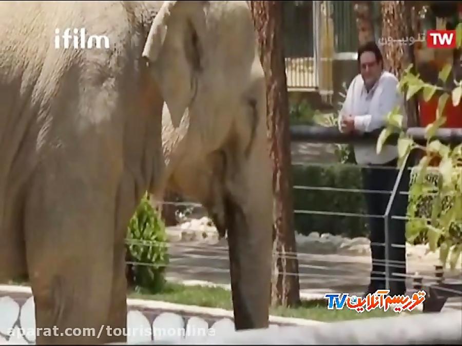 حیات وحش ایران (ایران شناسی)