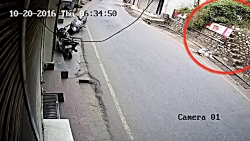 حمله پلنگ به سگ
