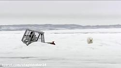 حمله خرس قطبی به فیلمبردار