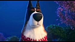 تریلر شخصیت روستر در انیمیشن The Secret Life Of Pets 2