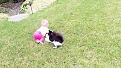 لحظات دیدنی بچه ها با گربه ها