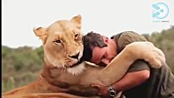 دوستی های عجیب و غریب با حیوانات وحشی