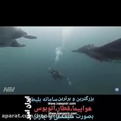 یکی از بزرگترین گونه های سفره ماهی