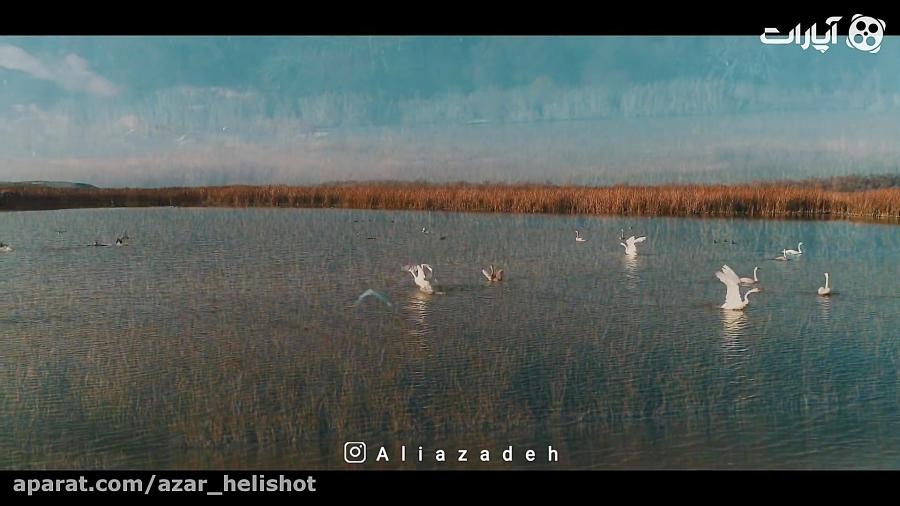 تصویر هوایی بی نظیر از حیات وحش ایران ( مغان )