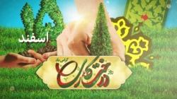 پروژه آماده افترافکت روز درخت کاری