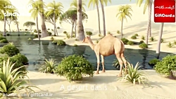 تریلر انتشار بازی GTA 6