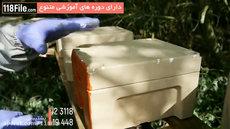 فیلم مراحل پرورش زنبور عسل  از 0 تا 100