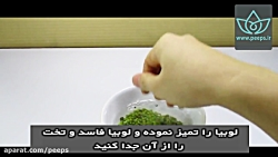 آموزش سبزه عید